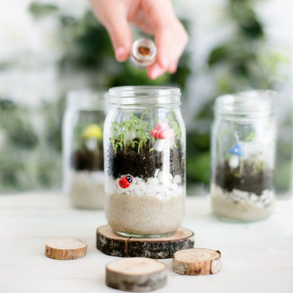 Eco gifts for kids lets create a mini Garden